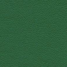 натуральная кожа зеленого цвета