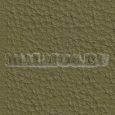 натуральная кожа Prescott aloe 256