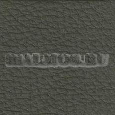 натуральная кожа Prescott birch 258